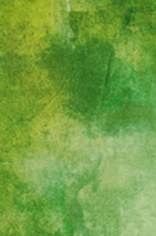表参道榊城整体院での腰のもみほぐし写真のための緑の背景画像